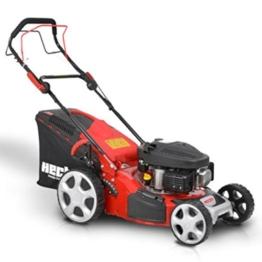 HECHT Benzin-Rasenmäher 543 SW Benzin-Mäher (3,5 PS Motorleistung, 43 cm Schnittbreite, 7-fache Schnitthöhenverstellung 25-75 mm, 50 L Fangsack) -